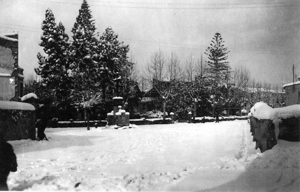 Imatge 5. El Jardí de Sant Pasqual després de la nevada de gener de 1946.