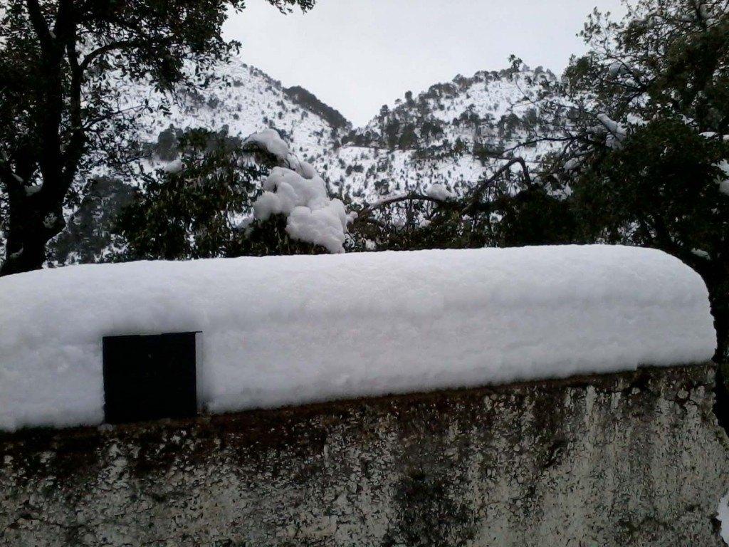 Amb l'ajuda de la carcassa d'un CD hem mesurat 25 cm de neu, molt compactada per les temperatures positives i l'aiguaneu.